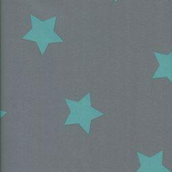 Tissu Softshell doublé polaire 97%pol/3%sp étoil