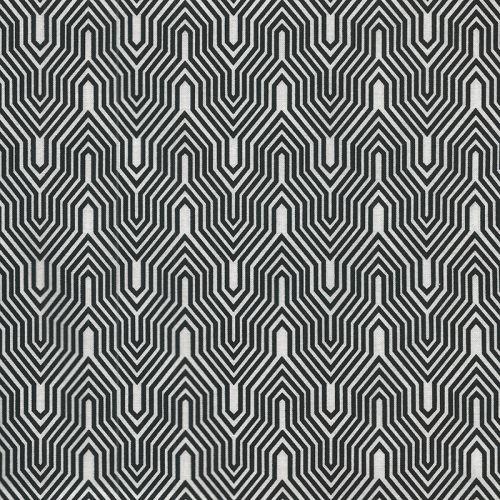 Tissu graphique noir/blanc