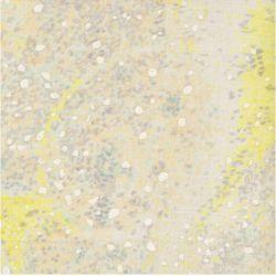 Tissu coton  Birds eyes rose poudré et jaune Nani Iro