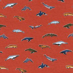 Tissu jersey dauphins/baleines fond orange Poppy