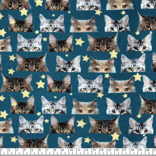 Tissu jersey chats Stenzo 95%cot/5%el larg 150 cm