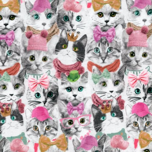 Tissu jersey Cats and Hats digital Poppy