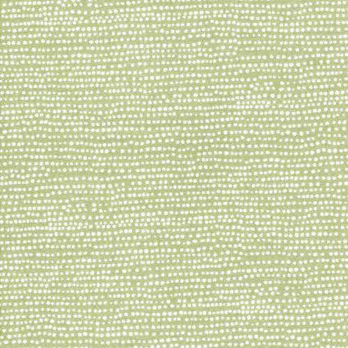 Tissu coton à pois fond vert Reed