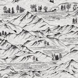Tissu jersey Montagnes fd gris Poppy 60%cot/35%pl/5%el larg